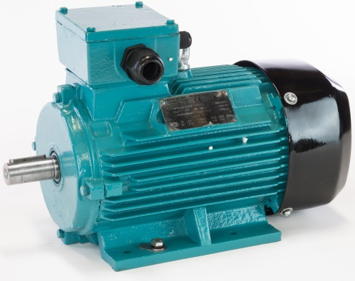 Asynchronous three-phase and brake motors